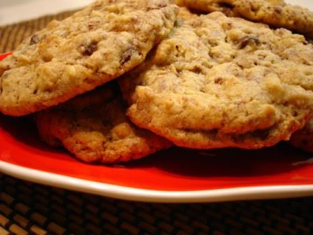 Pumpkin Chocolate Chip Cookies - for web