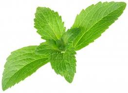 Stevia Nature's Natural Sweetener